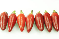 Hot pepper. Whole fresh chilli on white background Royalty Free Stock Photo