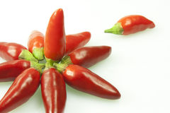 Hot pepper. Whole fresh chilli on white background Stock Photo