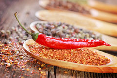 Hot pepper. And spices in a spoon close-up Royalty Free Stock Images