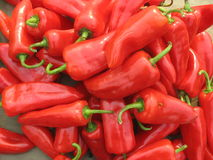Hot pepper Stock Photography