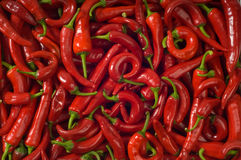 Hot pepper. Background. Red hot pepper. Spice background Stock Images