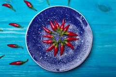 Hot pepper in blue plate on blue wooden background. Lunch layout with bright hot pepper. Healthy food delivery background Royalty Free Stock Image