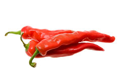 Hot pepper (chili) Royalty Free Stock Photos