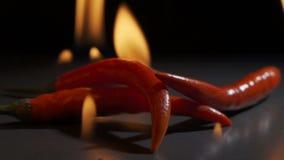 Hot pepper in fire