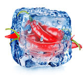 Hot pepper in ice cube stock image