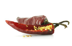 Hot pepper isolated Royalty Free Stock Photo