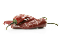 Hot pepper isolated Stock Photos