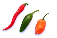 Hot Pepper Madness Stock Photo