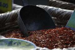 Hot pepper. Pepper in a market in Venice Royalty Free Stock Image