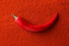 Hot pepper pod. On chili powder royalty free stock image