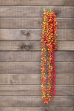 Hot Pepper, Red Pepper hanging on wooden wall Royalty Free Stock Photography