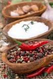 Hot pepper, sea salt and spices in bowls, close-up Royalty Free Stock Image