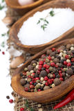 Hot pepper, sea salt and spices in bowls, close-up Stock Images