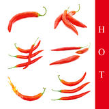 Hot pepper set Royalty Free Stock Photo