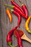 hot pepper and spices Royalty Free Stock Images