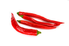 Hot pepper on a white background Stock Photos