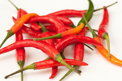 HOT PEPPERS. RED green orange HOT PEPPER Royalty Free Stock Image