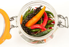 Hot peppers. Red green orange hot pappers in a jarrow Royalty Free Stock Image