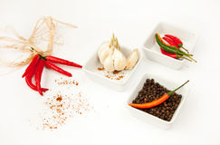 Hot peppers. Red, green, orange and black hot peppers with the garlic Royalty Free Stock Images