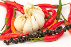 Hot peppers. Red, green, orange and black hot peppers with the garlic Stock Image