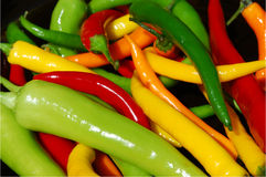 Hot peppers . Freshly picked hot peppers Stock Photography