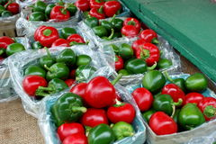Hot Peppers Royalty Free Stock Photos