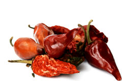 Hot peppers. A still life hot peppers stock image
