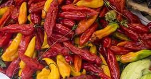 Hot peppers (aji limo) in a peruvian market Royalty Free Stock Photography