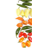 Hot peppers arrangement background Stock Photography