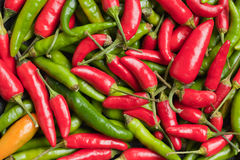 Hot peppers background Royalty Free Stock Images
