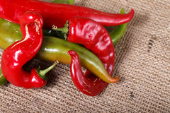 Hot peppers , beautiful background spices and condiments close up Royalty Free Stock Photos