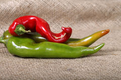 Hot peppers , beautiful background spices and condiments close up Stock Photo