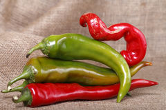 Hot peppers , beautiful background spices and condiments close up Stock Images