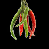 Hot peppers with bubbles Stock Photo