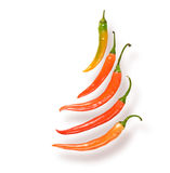 Hot Peppers. Royalty Free Stock Photo