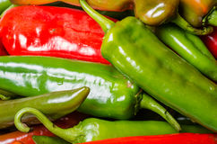 Hot peppers on display ready to use Royalty Free Stock Images