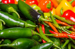 Hot peppers on display ready to use Royalty Free Stock Image