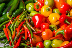 Hot peppers on display ready to use Royalty Free Stock Photo