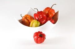 Hot peppers Habanero Stock Image