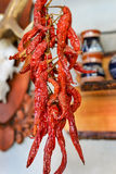 Hot peppers Royalty Free Stock Image