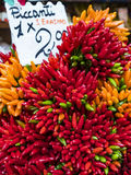 Hot Peppers Stock Images