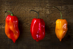 Hot Peppers in a Row. Three hot peppers on wooden background Royalty Free Stock Photos
