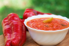 Hot peppers in tomato sauce with herbs and garlic Royalty Free Stock Photos