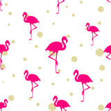 Hot pink flamingo and gold glitter. Seamless background Stock Images