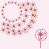 Hot Pink Flower Design Elements Royalty Free Stock Images