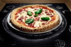 Hot pizza with cheese. Meat,  fresh basil on background Stock Photos