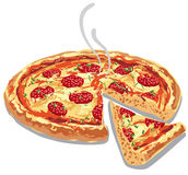 Hot pizza salami. Illustration of hot pizza salami with melted cheese vector illustration