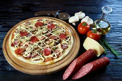 Hot flavored delicious Italian pizza stock images