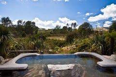 Hot Pool - New Zealand Stock Photos