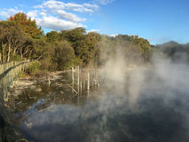 Hot pools in Kuirau Park in Rotorua New Zealand Royalty Free Stock Image